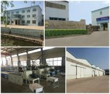 WPC Vorstand-Produktions-Strangpresßling-Maschinen-Zeile mit Cer und ISO