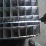 Treillis métallique soudé --- Galvanized/PVC enduit
