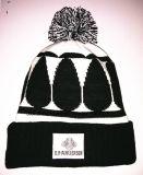 Exportation en Europe, chapeau tricoté brodé de chapeau et chapeau de Beanie de l'hiver