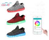 Precio barato de los zapatos ligeros del precio de fábrica LED