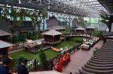 중국에 있는 특별한 관광 사업 온실 공급자