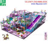 La púrpura embroma el patio de interior, patio de interior de la diversión (BJ-ID07)