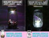 태양 Marson 단지 빛