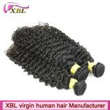 Erfahrene Menschenhaar-Fabrik-brasilianisches lockiges Haar