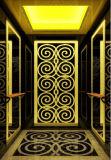 두 배 손잡이지주를 가진 고아한 오두막 전송자 엘리베이터