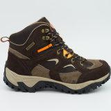 De Mensen die van uitstekende kwaliteit de Schoenen van de Trekking van Schoenen wandelen