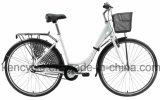 도시 자전거