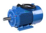 Durable Using наградная эффективность 3 серии электрического двигателя Jvf2 участка