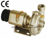 (CR125) Edelstahl MarineDiesels Motor-pumpt rohes Meerwasser China