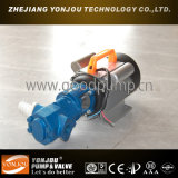 Wcb 휴대용 기어 기름 펌프