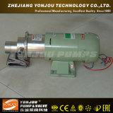 Pompa a ingranaggi magnetica dell'acciaio inossidabile di Cqcb