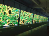 Schermo di visualizzazione mobile del LED di pubblicità esterna del camion LED TV di P10 SMD