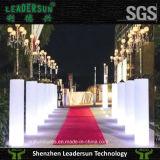 Meubles innovateurs Ldx-A11 d'éclairage de Leadersun