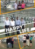 CNC 격리 유리제 부틸 코팅 기계