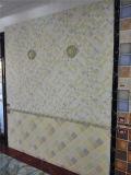 Wand-Fliese des Badezimmer-P65 und der Küche