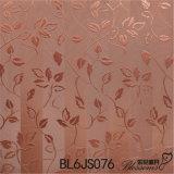 Tegels van de Vloer van het Bouwmateriaal de Ceramische Rustieke (600X600mm)
