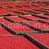 Colore rosso organico Gojiberry delle erbe della nespola