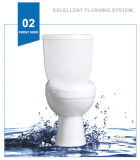 Weidansi en céramique Wash Down S-Trap Two Pieces Toilet (WDS-T6204)