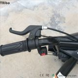 Автомобилей смещения Kart смещения смещение Trike автомобилей 196cc смещения дистанционных дистанционное