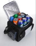Mini réfrigérateur électronique 12liter DC12V, AC100-240V avec le refroidissement et le chauffage pour le véhicule, utilisation d'activité en plein air