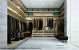De Amerikaanse Kast van de Kast van de Garderobe van de Stijl Walk-in
