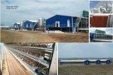 Poultry pré-fabricado House com Qualified Full Set Poultry Equipment