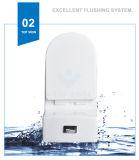 Weidansi en céramique lavent vers le bas la toilette d'une seule pièce de courroie (WDS-T6105)