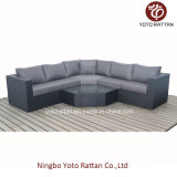 Rattan nero Sofa Set per Outdoor (1303)