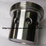Sanitär Spring Typ Anti-Vakuumventil (YY-1001CM)