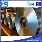 Bobina de aço do zinco na largura galvanizada 1000mm