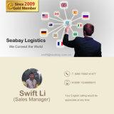 Berufsluftfracht-Service von China nach weltweit