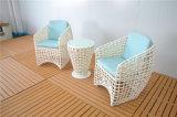 유럽 유형 Handmade 등나무 다방 의자 및 커피용 탁자