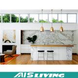 Belüftung-Tür mit Melamin für Küche-Schrank-Möbel mit verschiedenen Farben (AIS-K078)