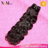 싼 물결파 처리되지 않은 Virgin 머리 브라질 페루 Malaysian 인도 머리 캄보디아 물 곱슬머리