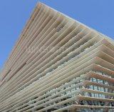 Подгонянный строя Panelling стены сота украшения фасада алюминиевый