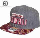 Boné de beisebol ajustável feito sob encomenda dos esportes do Snapback do gancho 2016 & do chapéu da forma do engranzamento do laço com o bordado