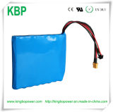 59.2V 2ah Rechargeable Li-IonenAutoped Batteries