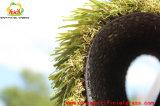 اصطناعيّة يرتّب عشب لأنّ حديقة مع [روهس] تصديق