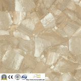 600X600フォーシャンFull Body Glazed Tiles Floor Tile (IV6311)