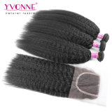 Lace ClosureのブラジルのKinky Straight Hair Bundles