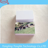 Dupla face Impressão de cartão de injetável para PVC