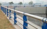 Brücken-Geländer setzten Rohr des Edelstahl-304 ein
