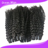 卸し売りCheap Hot Sale 7A Grade Chemical Free UnprocessedフィリピンのVirgin Remy Hair Extension (w-110)