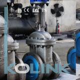 Soupape à vanne d'acier inoxydable CF8m CF8 CF3 CF3m