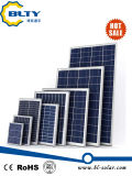 PolySonnenkollektor 260W für Solarzelle des Sonnensystem-260watt