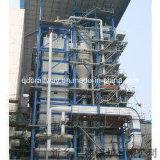 CFB (обеспечивая циркуляцию боилер 15-50t/h кипящего слоя)