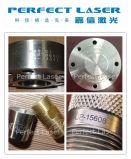Impresora de la placa de identificación de la etiqueta de plástico de la peña del PUNTO de la etiqueta con el SGS del CE