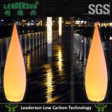 Lampe d'étage multicolore des meubles DEL d'éclairage de DEL Ldx-FL01