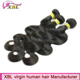 Cheveux indiens de cheveux humains de Vierge expérimentée d'usine vrais