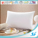 Pegasus Home Fashions Ez Dreams Microfiber Pillow, Standard는, 2 포장한다
